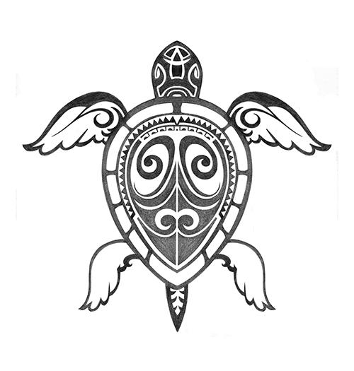 Turtle_Maori_n